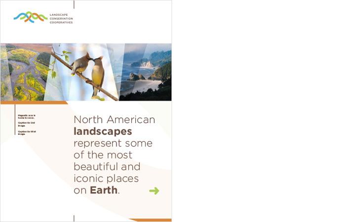 brochure cover, conservation, landscape, nonprofit   Allegro Design   Portland, OR