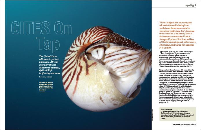 Feature story spread for U.S. Fish & Wildlife magazine. // Allegro Design