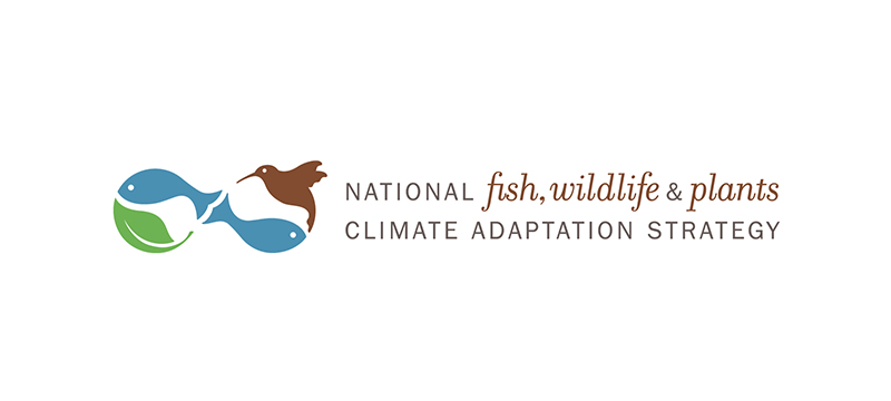 Logo design for a climate adaptation initiative. Allegro Design.