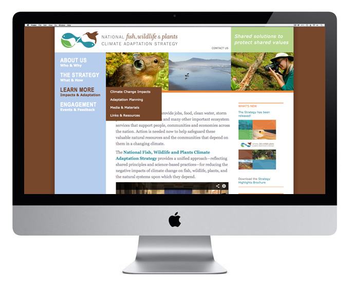 Website design for climate adaptation initiative. Allegro Design.