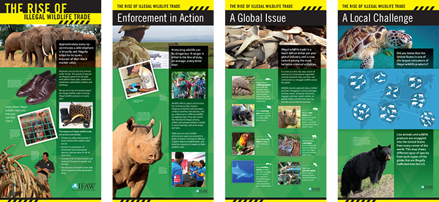Exhibit design for International Fund for Animal Welfare. Design by Allegro Design